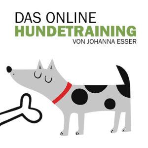 Das online Hundetraining von Johanna Esser